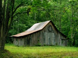 Country barn, img.518 by harrietsfriend