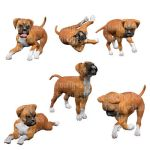 Boxer Puppies Stock 3 by Shoofly-Stock