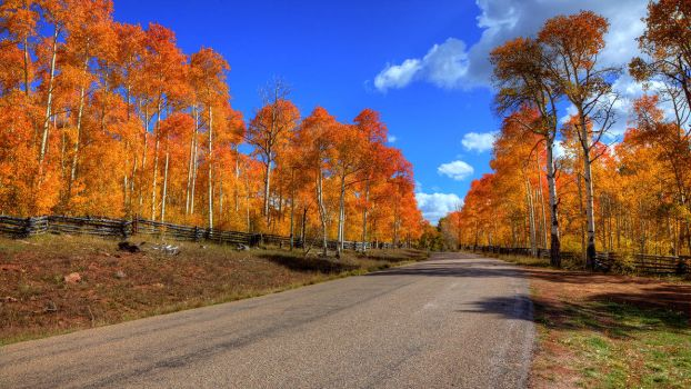 High Country Fall by ernieleo