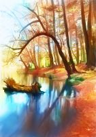 colorful woods by flylisi