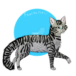 Feathertail by Beam15