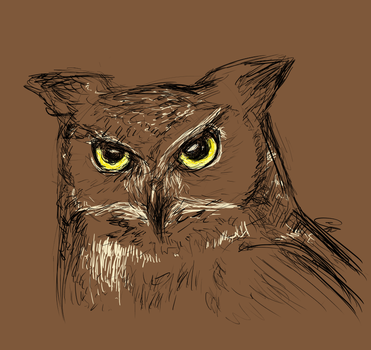 Great Horned Owl by Tareloin