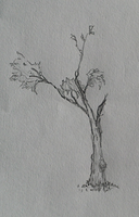 small Tree by T0-B1