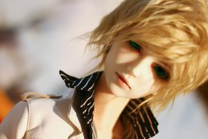 BJD-At First Glance by bananaleaf27