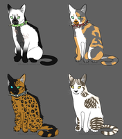 Warrior Cats Adopts 3 CLOSED by AdoptableSky