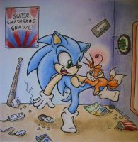 'Wazzup, Sonic?' - Request by TheGreenDragonGirl