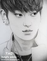 EXO Tao by marykrystal