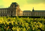 Louvre Museum by soixante-neuf