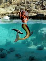 Sirena Luzii ~ a mermaid in the otter pool by sirenabonita