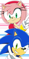 TEAM Sonic and Amy by Aamypink