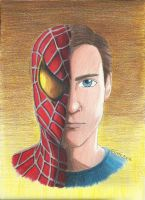 Spider-Man by ElvenWarrior14