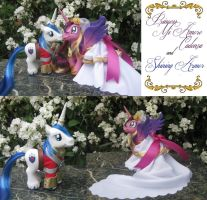 Princess Cadence and Shining Armor by SalliCostumer