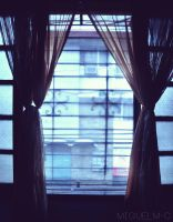 Window by miguelm-c