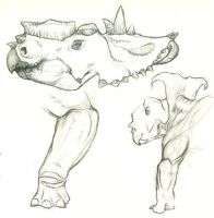 More Pachyrhinosaur sketches by WarrenJB
