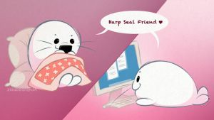 Harp Seal Friends: Chatting by zillabean