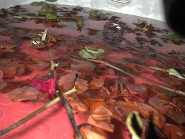 Bath of roses and thorns by slipping-away