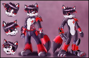 Darkfox's Final ref sheet by DarkFoxProjectX