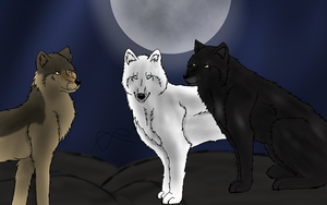 the three of the night-seance, ombre and kado by Optimistic-Chip