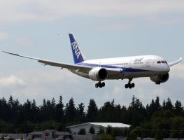 ANA 787 Landing by shelbs2