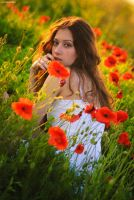 Poppy Effect by platen