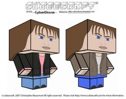 Cubeecraft - Sarah-Jane Smith by CyberDrone