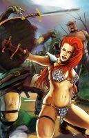 Red Sonja cover concept by ErikHodson