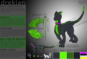 Updated Dragon Ref by drekian