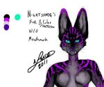 Nightshade's face markings by aichan25