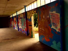 Wall paintings by Lyco-sidae