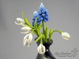 snowdrops and muscari by polyflowers