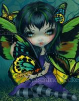 Butterfly Fairies III:  Goliath Birdwing by jasminetoad