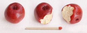 red apple miniature by BadgersBakery