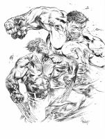 Wolverine vs Hulk by TomRaney