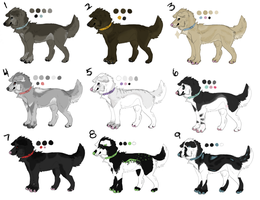 Canine Point Adoptables 1 by Akitafeet