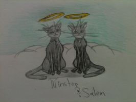 My Two Angels, Winston and Salem by Swiftstone