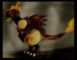 Feathers of fire- evo