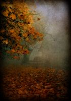 Autumn fog by Alexandra35