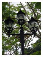 Lamps by noremorseiwannadie