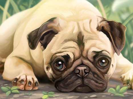 Pug Painting by DawnFrost