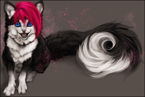 C .: Lucky Kitten :. by WhiteSpiritWolf