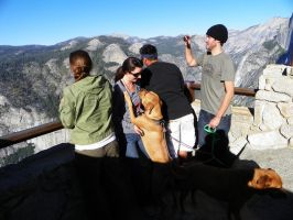 Tourists at Glacier Point by Synaptica