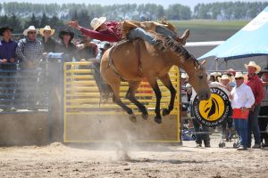 Taupo Rodeo 156 by Sooty-Bunnie