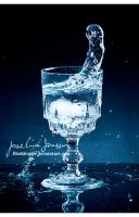 a glass of water 02. by Bloddroppe-nature