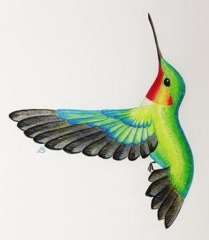 Hummingbird in Watercolour by LiHy