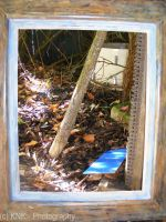 Photo Frame by KNK-Photography