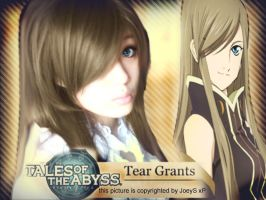 Tales of Abyss - Tear Grants by Noah95