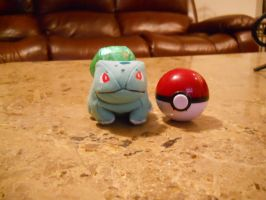 bulbasaur n pokeball by slipknot012345678