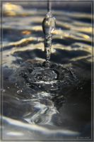 waterdrop 5 by 3io