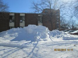 this isa 7 foot snow drift in my parkinglotWindsor by catsvsfox