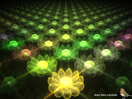 RR3 Apo3D Team9- Flowerfield by MurdocSnook